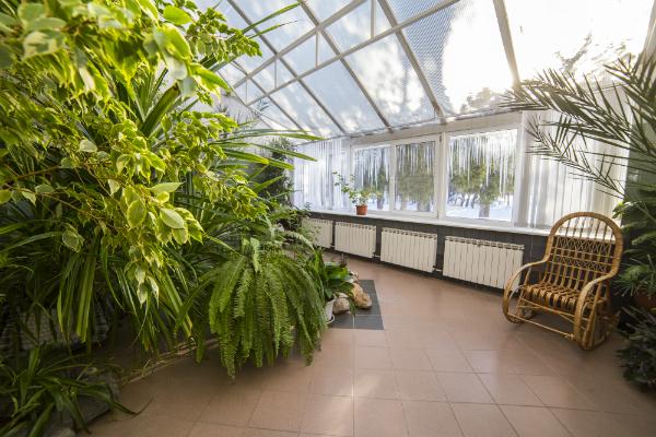 die richtige luftfeuchtigkeit l sst pflanzen besser gedeihen brune magazin. Black Bedroom Furniture Sets. Home Design Ideas