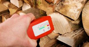 Die Holzfeuchte und das Klima