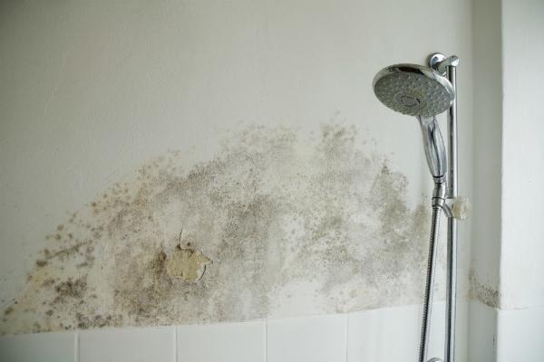 Schimmel im Badezimmer