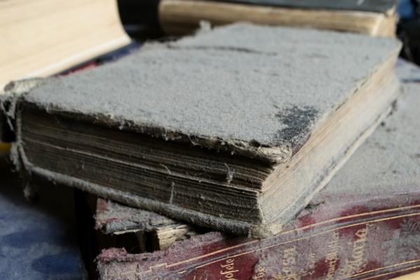 Ansammlung von vielen groben Staubpartikeln auf einem alten Buch