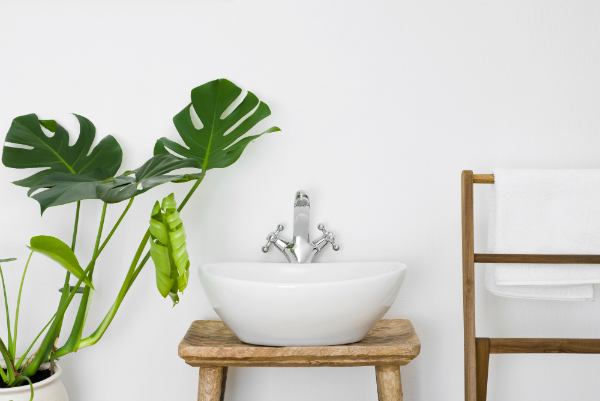 Zimmerpflanzen im Badezimmer