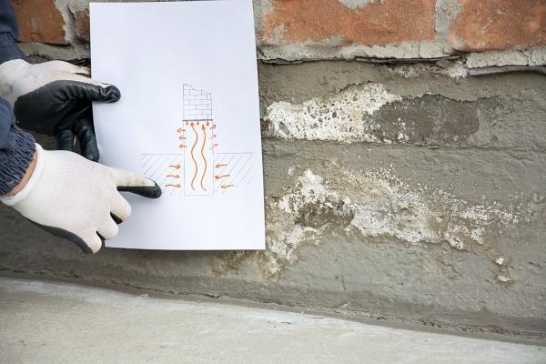 Zeichnung erklaert wie sich Salpeter entwickelt