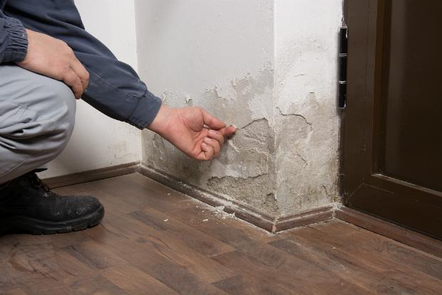 Was bei feuchten Wänden passieren kann
