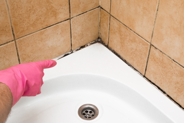 schimmel-duschkabine