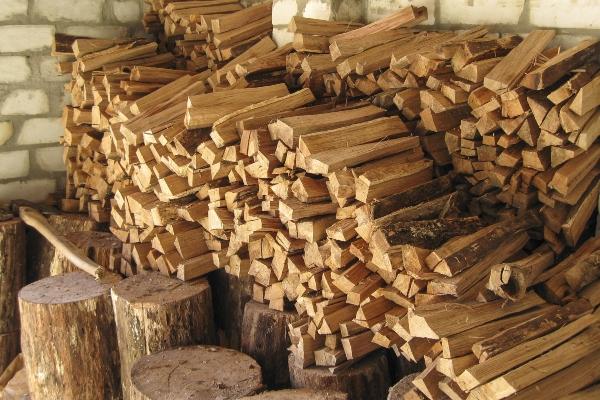 feuerholz-lagerbedingungen