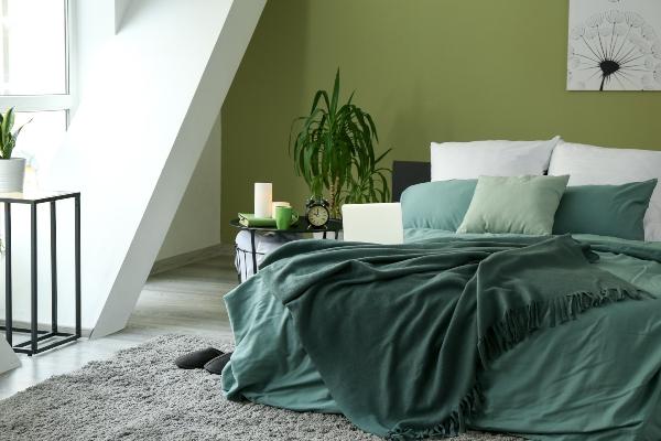 Zimmerpflanzen beeinflussen das Schlaferlebnis positiv