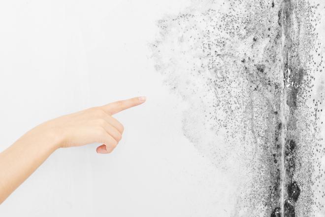 Mysteriöse schwarze Flecken an der Wand - Schimmel oder Schwarzstaub?