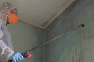 Mann bekämpft Schimmel im Neubau mit Chemie