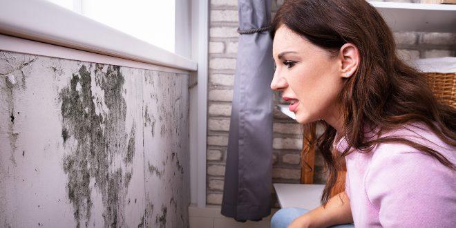 Frau begutachtet Schimmelschaden