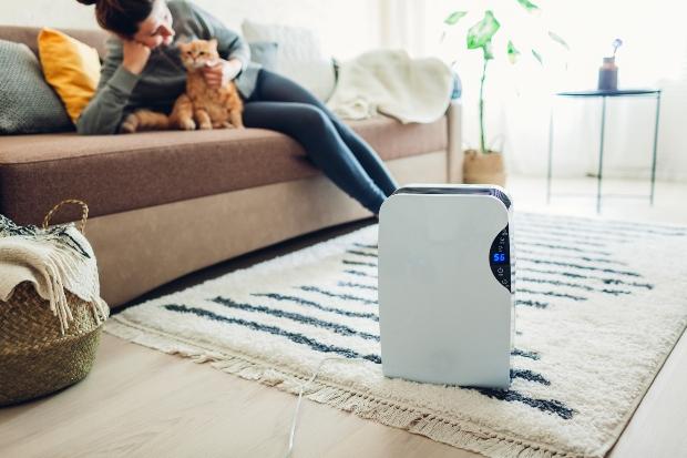 Luftbefeuchter im Wohnzimmer - Gesundes Wohnen betrifft die korrekte Luftfeuchtigkeit