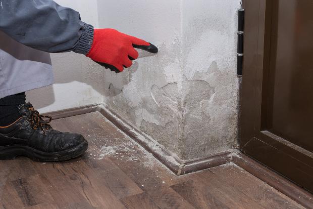 Mann mit Handschuhen kratzt an Wand mit Salzausblühungen