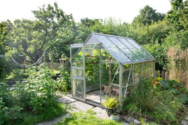 Kleines Gewächshaus im Garten