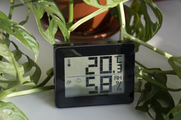 Hygrometer zeigt 20,3 Grad Celsius und 58% Luftfeuchtigkeit