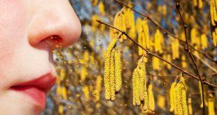 Junge Frau atmet Ponnen ein - Pollenallergie